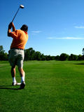 Golfer. A golfer watches his ball after striking it Stock Images
