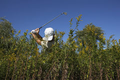 Golfer. Hitting out of deep rough Royalty Free Stock Photo