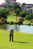 Golfer. In field Stock Photos