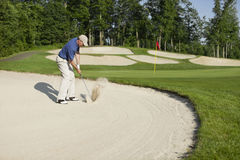 Golfer blasting out of bunker onto green. Golfer in a blue shirt blasting out of bunker onto green Royalty Free Stock Photo