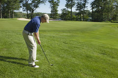 Golfer chipping onto green. Golfer preparing to chip onto a green on sunny summer day Stock Image