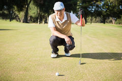 Golfer crouching and looking his ball Royalty Free Stock Image