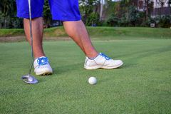 Golfer with golf Club. And golf ball on green golf course Stock Photography