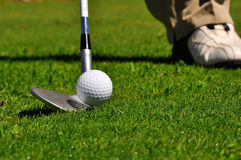 Golfer in a golf course. Real golfer ready to strike the ball Royalty Free Stock Photos