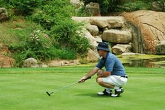 Golfer on the green. Middle age golfer estimating the line for the putt on South African golf course stock photos