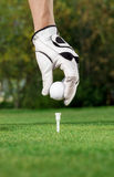 Golfer hand and ball Stock Photos