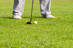 Golfer is hitting golf. Golfer is hitting a golf on green grass Royalty Free Stock Images