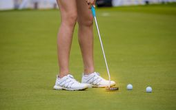 Golfer pushing golf to hole at golf course. Golfer pushing golf to hole on green  grass at golf course in competition Royalty Free Stock Photos