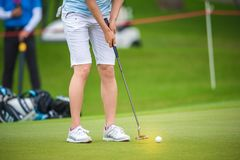 Golfer pushing golf to hole at golf course. Golfer pushing golf to hole on green  grass at golf course in competition Stock Photos