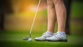 Golfer hitting golf to hole at golf course. Golfer hitting golf to hole on green  grass at golf course in competition Stock Photo