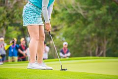 Golfer pushing golf to hole at golf course. Golfer pushing golf to hole on green  grass at golf course in competition Stock Images