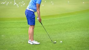 Golfer pushing golf to hole at golf course. Golfer pushing golf to hole on green  grass at golf course in competition Stock Image
