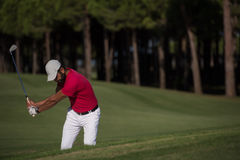 Golfer hitting a sand bunker shot Royalty Free Stock Photography