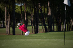 Golfer hitting a sand bunker shot Royalty Free Stock Photo