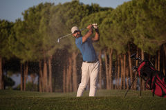 Golfer hitting a sand bunker shot on sunset. Golfer shot ball from sand bunker at golf course with beautiful sunset in background Royalty Free Stock Image