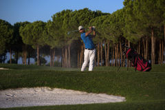 Golfer hitting a sand bunker shot on sunset Stock Photography