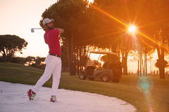 Golfer hitting a sand bunker shot on sunset. Golf player shot ball from sand bunker at course with beautiful sunset with sun flare Royalty Free Stock Photos