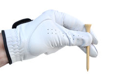 Golfer Holding a Golf Tee Stock Images
