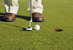 Golfer making putt. A golfer is making a very easy putt Stock Image