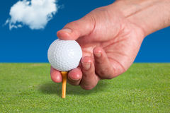 Golfer places a golf ball. And tee in the ground Stock Photography