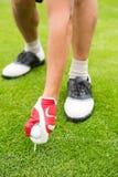 Golfer placing golf ball on tee Royalty Free Stock Image