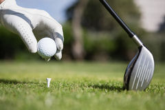 Golfer placing golf ball on tee Royalty Free Stock Photos
