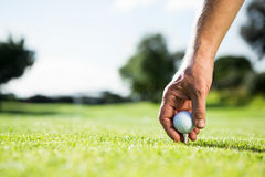 Golfer placing golf ball on tee Royalty Free Stock Images