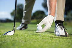 Golfer placing golf ball on tee Royalty Free Stock Photo