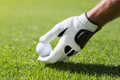 Golfer placing golf ball on tee Royalty Free Stock Photo
