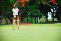 Golfer player green putting. Golf woman player green putting Royalty Free Stock Images
