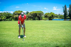 Golfer playing golf Royalty Free Stock Photo