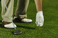 Golfer preparing ball Royalty Free Stock Photography