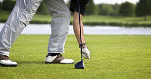 Golfer preparing for teeing off. Male golfer arranging tee with ball to tee off Royalty Free Stock Image