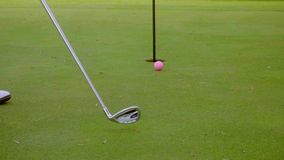 Golfer preparing to sink a putt stock footage