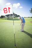 Golfer putting ball on the green at the eighteenth hole Royalty Free Stock Photos