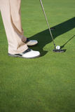 Golfer putting ball on the green Royalty Free Stock Images