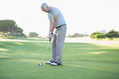 Golfer putting ball on the green Stock Image