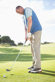 Golfer putting ball on the green Royalty Free Stock Photos