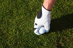 Golfer putting the ball on a tee Royalty Free Stock Photography