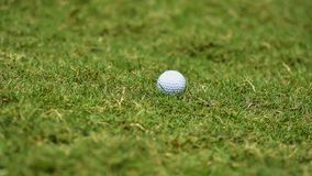 Golf ball putting on green grass near hole golf to win in game at golf course with blur background and sunlight ray. Golfer is putting golf ball on green grass stock photography
