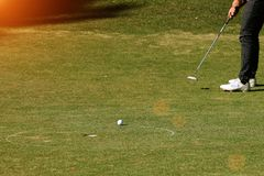 Golfer putting golf ball on the green golf. Lens flare on sun set evening time Stock Photography
