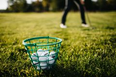Golf approach shot with iron from fairway at sunrise royalty free stock image