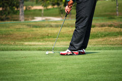 Golfer putting on the green. Near the hole Stock Photography