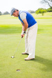 Golfer on the putting green Royalty Free Stock Photo