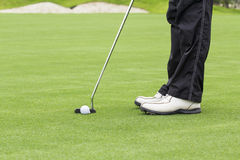 Golfer putting on green. Royalty Free Stock Image