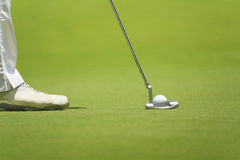 Golfer putting on green. Royalty Free Stock Photography