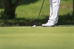 Golfer putting, Stock Photo