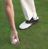 Golfer's hand picking ball out of hole. Shot on a real putting green, showing a golfer's foot wearing golf shoe, and hand reaching down to pick up golf ball out Stock Photo