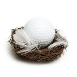 Golfer's Nest Egg Royalty Free Stock Photo