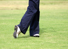Golfer's shoes Stock Images